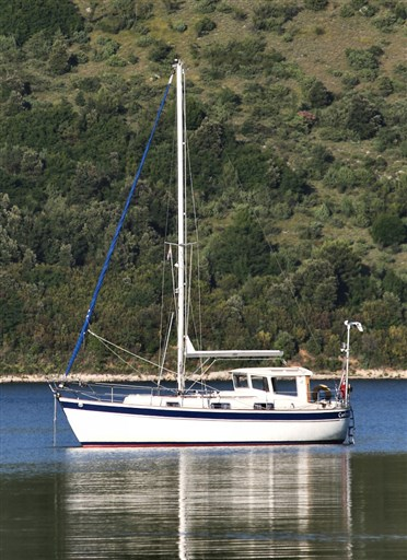 Curlew14
