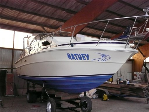 Sea Ray 300 EC msp473452 2
