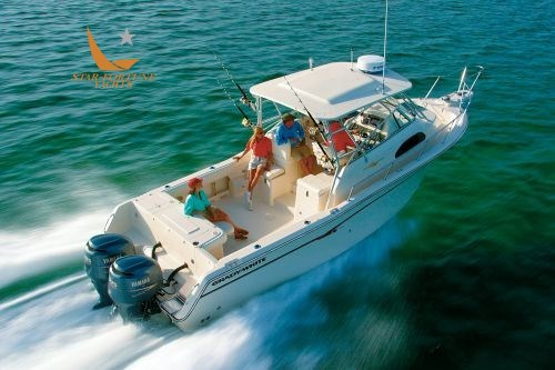 Grady White Boats 300 Marlin Wa (2021)