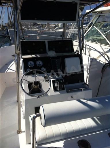 Angler Horizon 252 CC (3)
